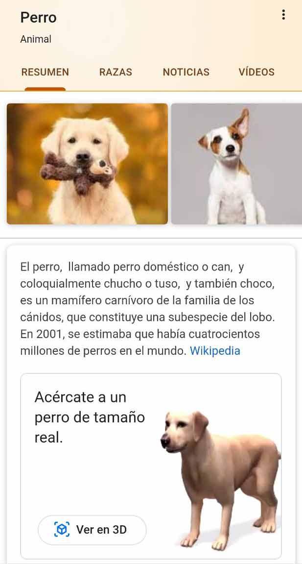 Knowledge de animales » aparece poniendo el nombre del animal en Google